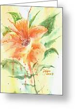 Bright Orange Flower Greeting Card