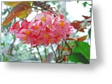 Bright Pink Cloud Greeting Card