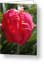 Bright Pink Tulip1 Greeting Card