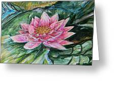 Bright Pink Waterlily Greeting Card