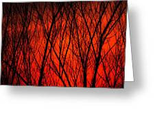 Bright Red Sunset Greeting Card
