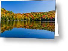 Bright Reflection Greeting Card