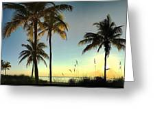 Bright Sunshine Greets The Palms Greeting Card