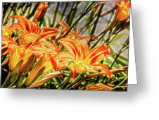 Brighten Your Life Greeting Card