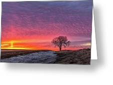 Brilliant Skies Greeting Card