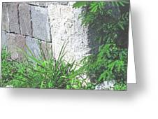 Brimstone Wall Greeting Card