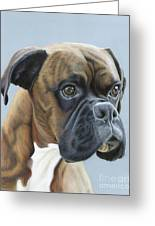 Brindle Boxer Dog - Jack Greeting Card