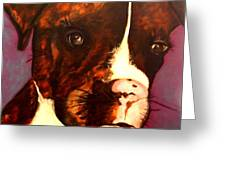 Brindle Boxer Puppy- Porter Greeting Card by Laura  Grisham
