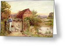 Bringing Home The Sheep Greeting Card