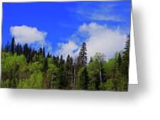 British Columbia Landscape Greeting Card