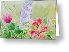 British Wild Flowers Greeting Card
