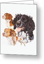 Brittany Spaniel Greeting Card