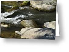 Broad River  Greeting Card