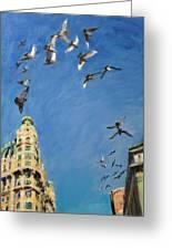 Broadway Pigeons No. 1 Greeting Card