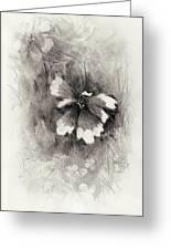 Broken Blossom Greeting Card