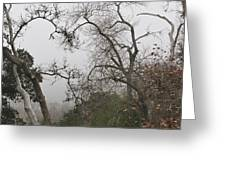 Broken Heart In  Fog Greeting Card