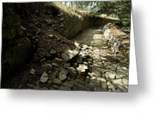 Broken Stone Wall Cascades Stones Greeting Card