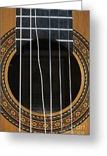 Broken String On A Classical Guitar Greeting Card