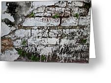 Broken Stucco Wall With Whitewashed Exposed Brick Texture And Ve Greeting Card