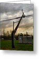 Broken Telephone Pole Greeting Card