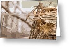 Broken Tree Base Greeting Card