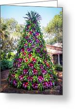 Bromeliad Christmas Tree At Pinewood Estate, Bok Tower Greeting Card