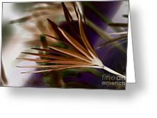 Bronze Ferns Greeting Card