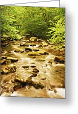 Bronze Stream Greeting Card