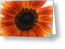 Bronze Sunflower No 2 Greeting Card