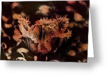 Bronze Tulip Greeting Card by Richard Ricci