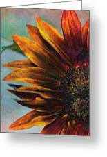 Bronzed By The Sun Greeting Card