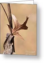 Bronzed Oak Leaf Vertical Greeting Card