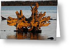Bronzed Wood Greeting Card
