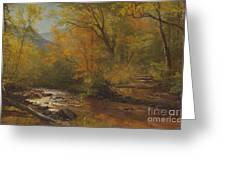 Brook In Woods Greeting Card