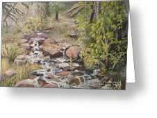 Brook Greeting Card by Saundra Johnson