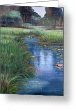 Brookgreen Meadows Greeting Card by Shirley Lawing
