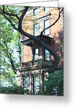 Brooklyn Building And Tree Greeting Card