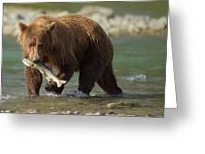 Brown Bear With Salmon Greeting Card