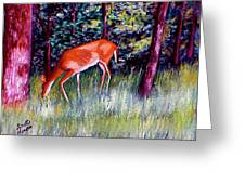 Brown County Deer Greeting Card