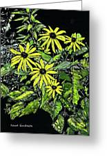 Brown-eyed Susans II Greeting Card
