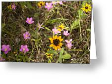 Brown Eyed Susans With Rose Gentian Flowers Greeting Card
