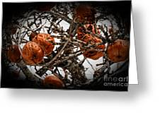 Brown Fruit Abstract Greeting Card