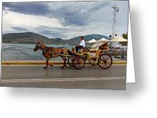 Brown Horse Drawn Carriage Greeting Card