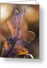 Brown Leaf Greeting Card