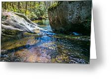 Brown Mountain Forest Greeting Card