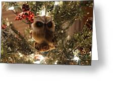 Brown Owl Greeting Card