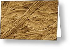 Brown Paper Towel Greeting Card