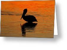 Brown Pelican At Sunset Greeting Card