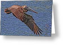 Brown Pelican Flyby Greeting Card