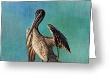 Brown Pelican - Fort Myers Beach Greeting Card